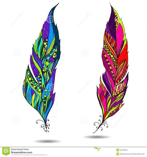 decorative bird feather stock vector illustration of