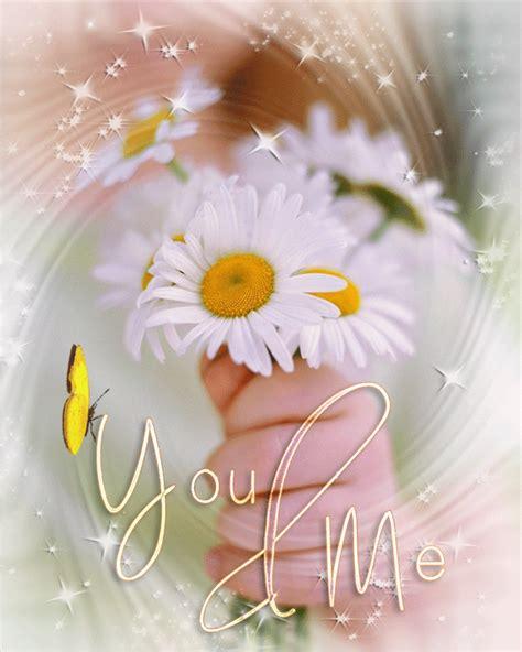 imagenes de flores espirituales 20 im 225 genes animadas de flores hermosas margaritas