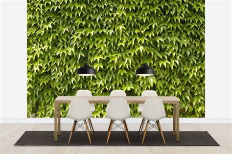 greening your home bringing the outside in destination
