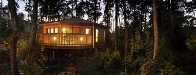 saratoga springs disney treehouse villa disney world