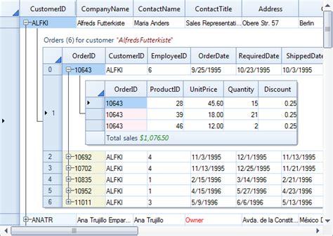 ui pattern master detail super data grid winforms control c vb