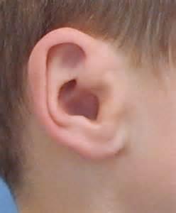 prosthetic ear microtia a treatment option