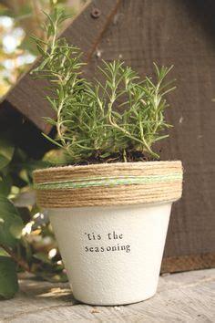 lavender holyfield  plantpuns  etsy garden plant