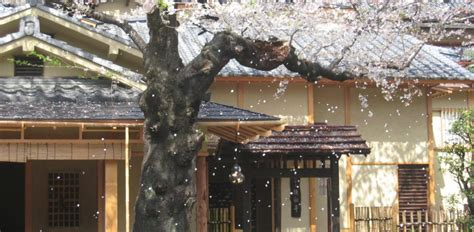 buy a house in tokyo buy house in tokyo 28 images buying property in the age of abenomics the japan