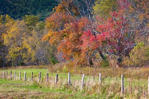smoky mountain fall colors 2017 smoky mountains fall foliage and forecast