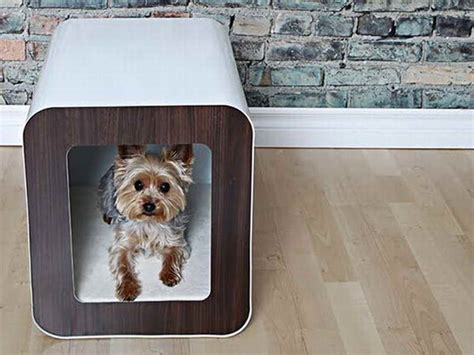 luxury indoor dog house ideas luxury indoor dog houses cute indoor dog houses