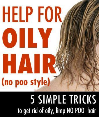 sollutions to dry limp hair 1000 ideas about no shoo method on pinterest no