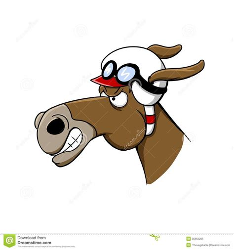 cartoon race horse race winner cartoon www pixshark com images