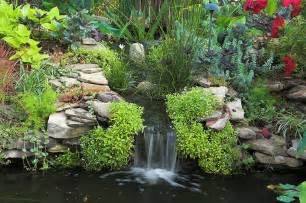 Digging A Backyard Pond Your Backyard Fish Pond How To Build A House