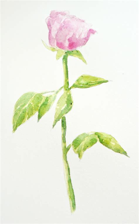 Flower In A Vase Painting Art Demo Simple Rose Bud In Watercolour For Mum On