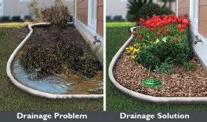 Mosquito Solutions Backyard Lawn Drainage In Universal City Tx