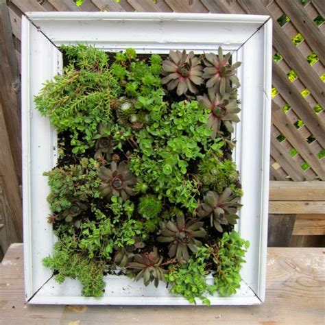 Diy Vertical Garden by Diy Vertical Frame Garden
