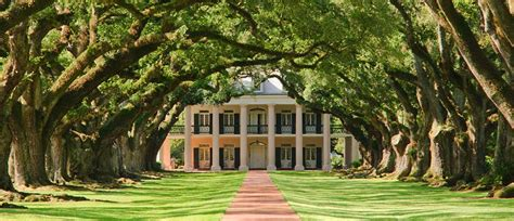 oak alley plantation new orleans plantation country plantation country weekend getaway visit south