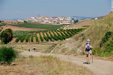 from st jean pied de port to santiago walking holidays santiago de compostela from jean
