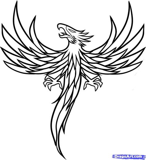 phoenix tattoo book phoenix coloring page coloring book patterns pinterest