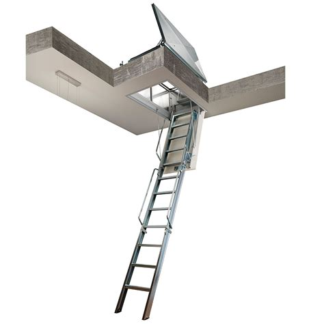 Ceiling Access Ladder by Flat Roof Access Ladder