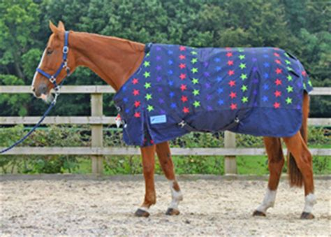 cheap fly rugs for horses rugs cheap roselawnlutheran