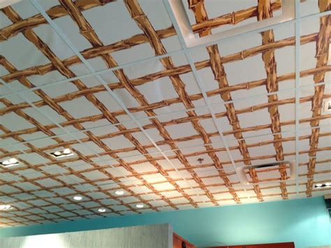 33 best ceilings images on pinterest dropped ceiling