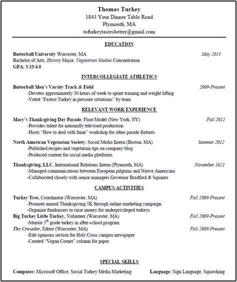 Mock Resume Templates by Mock Resume Free Excel Templates