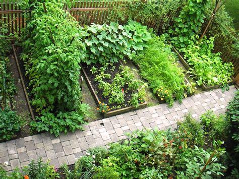 skippys vegetable garden skippy s vegetable garden august 2006