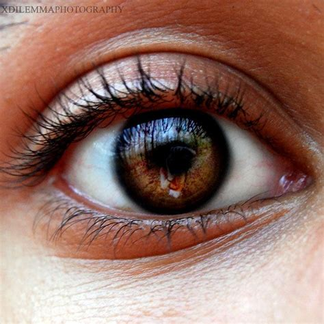 colore degli occhi diversi er significato colore degli occhi marroni