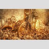 Old Bicycle Wal...