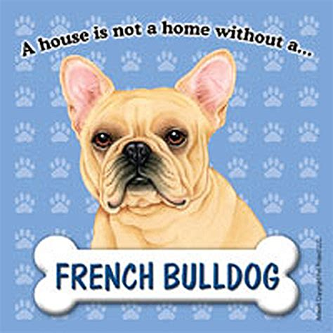 bulldog dog house french bulldog dog magnet sign house is not a home
