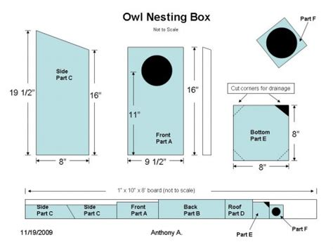 owl house design screech owl house plans how to build a screech owl box feltmagnet