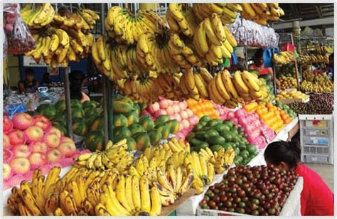 ava vision | fruits & vegetables from the philippines