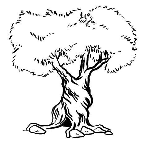coloring pages tree trunk tree trunkcoloring page az coloring pages