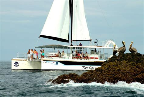 catamaran costa cat catamaran manuel antonio adventure includes snorkelling