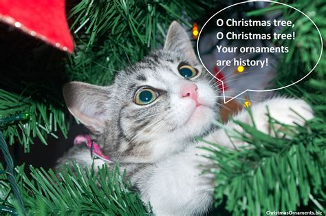 cat on top of christmas tree meme o tree cat ornaments meme ornaments top brands artists