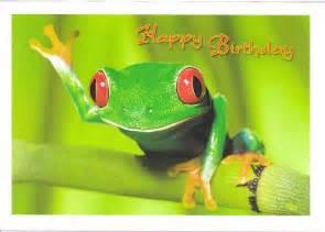 happy birthday frog flickr photo