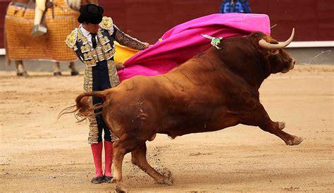 entradas plaza de toros las ventas entradas para corridas de toros en plaza de toros de las