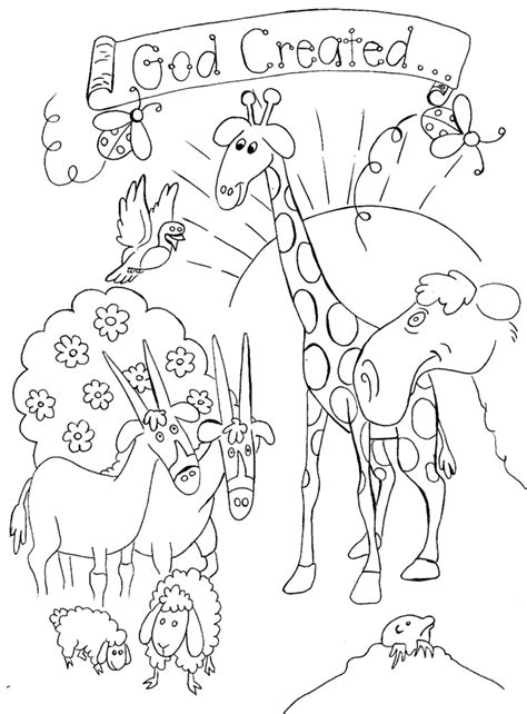 coloring pages creation animals 1000 images about sunday school on pinterest creation