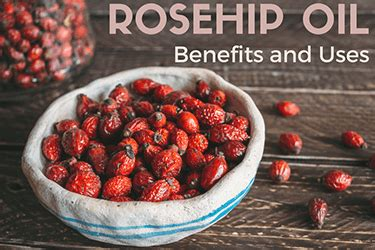 rosehip oil benefits and uses for face, skin, hair & where