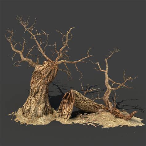 tree 3d model tree 04 3d model cgstudio