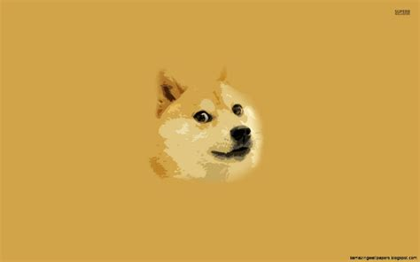 Doge Meme Wallpaper - doge meme wallpaper 1920x1080 wallpapers gallery