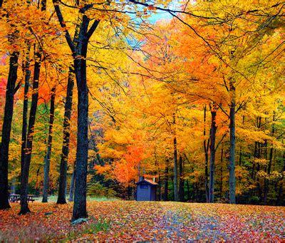 us fall color scenic drive guide | compare.com