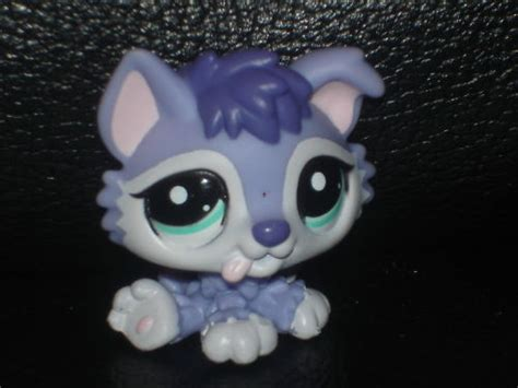 lps husky puppy other collectable toys littlest pet shop purple husky puppy 1810 was sold for r25
