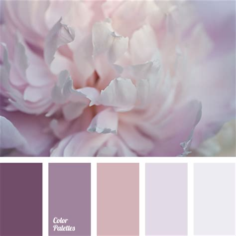 beige and pink tag color palette ideas