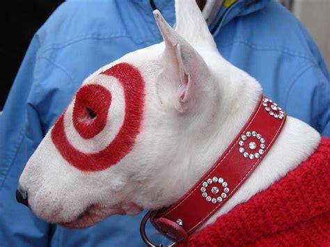 puppy target target keeps bullseye s secretive business insider