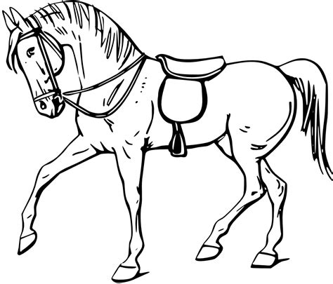 Horse Coloring Pages Preschool And Kindergarten Free Colouring Pictures To Print
