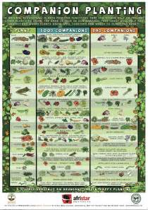 Companion Vegetable Garden Layout Vegetable Garden Companion Planting Chart