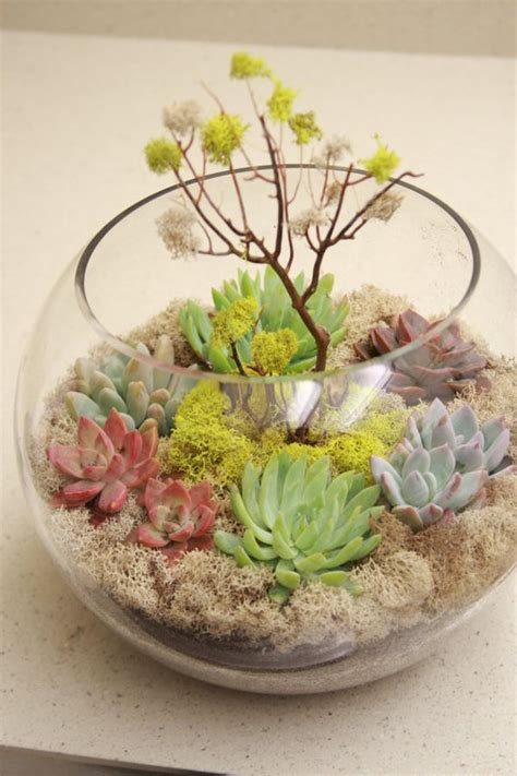 Fish In Flower Vase 11 Succulent Centerpieces For A Wedding Reception With Eco