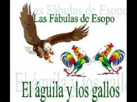 el aguila y el 006 el 225 guila y los gallos wmv youtube