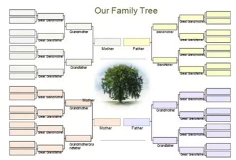 microsoft family tree template 10 free genogram templates exles xdesigns