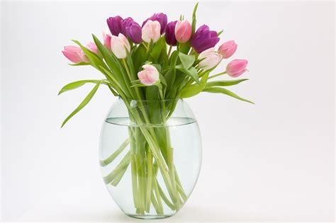 fiori vetro vasi in vetro per fiori e piante 5 idee di design