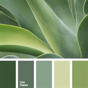 and green color combination chlorine chlorine color cold shades of green color matching dark green green monochrome