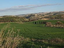 slew foot in the bible land of israel wikipedia